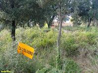 A prop de Ca l'Oliveró. Autor: Amadeu Olive