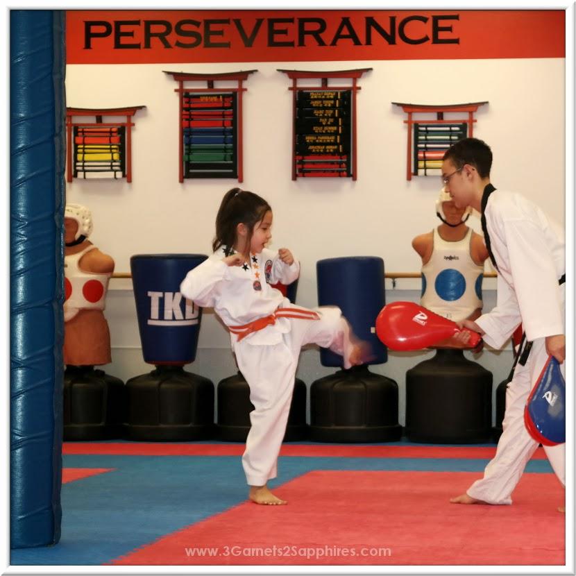 Perseverance - #Taekwondo Tenets - #TKD