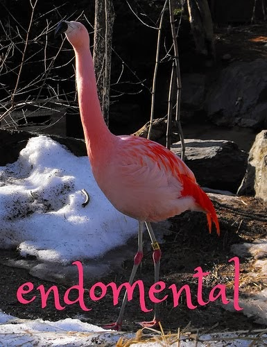 endomental