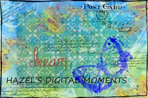 Hazel's Digital Moments