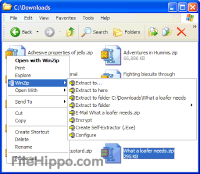Free Download WinZip 17.5.10480 Full Version Terbaru 2013