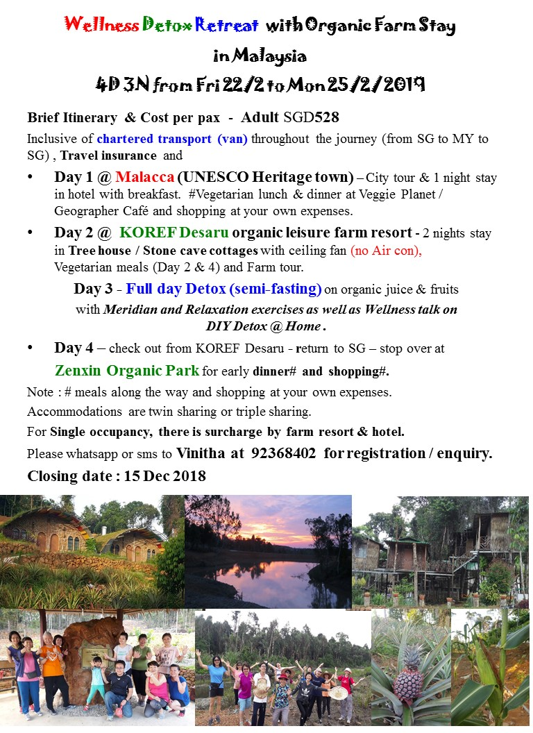 2019 Post CNY - Wellness Detox Retreat