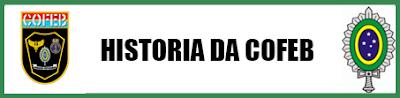 Manual Exercito ( COFEB ) Historia+da+COFEB