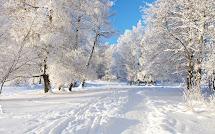 Зимнего настроения!