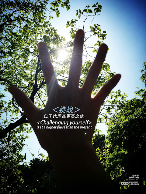 郑明析, 月明洞, 摄理教会, 挑战, 高, 手, 阳光, 树, Joshua Jung, Providence, Wolmyeung dong, challenge, high, hand, sun light, tree