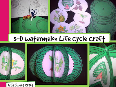 watermelon life cycle craft