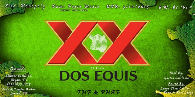 Dos Equis Banner