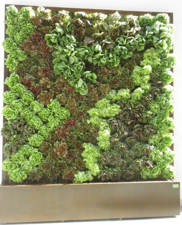Jardines verticales para el interior y exterior de tu casa - Jardines verticales exterior ...