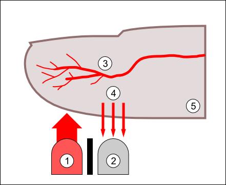 DIY Pulssensor | Leuchtdiödchen und Kondensator