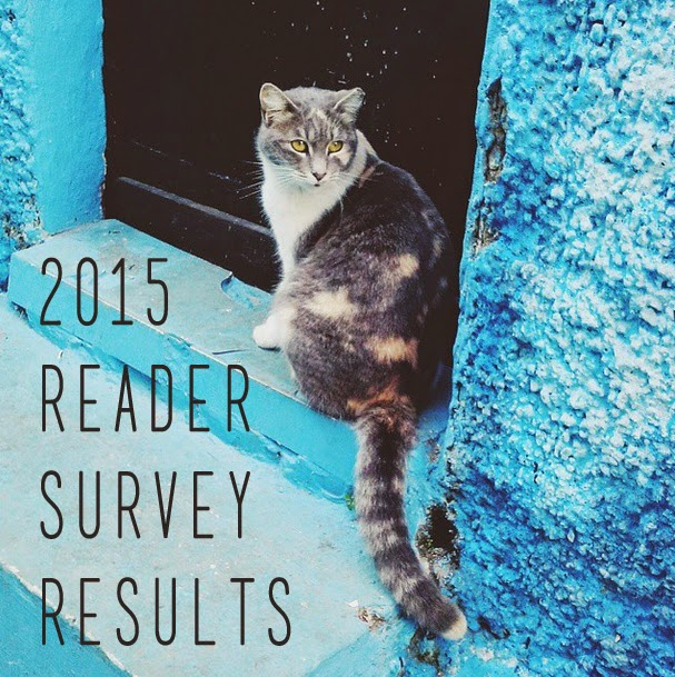 Morocco, cat, travel, oudaya, reader survey
