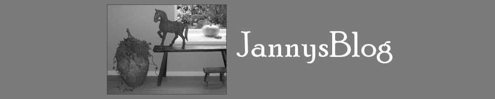 jannysblog
