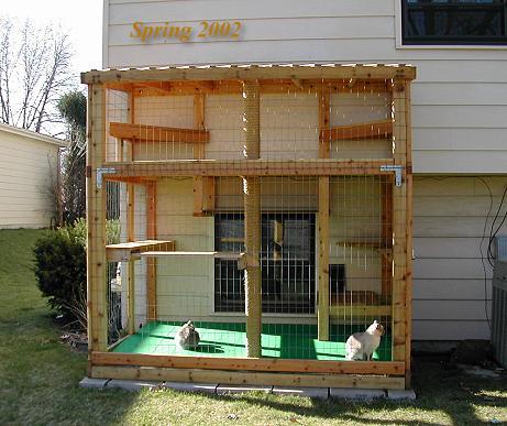 dicas peludas gato em casa   liberdade com seguran a