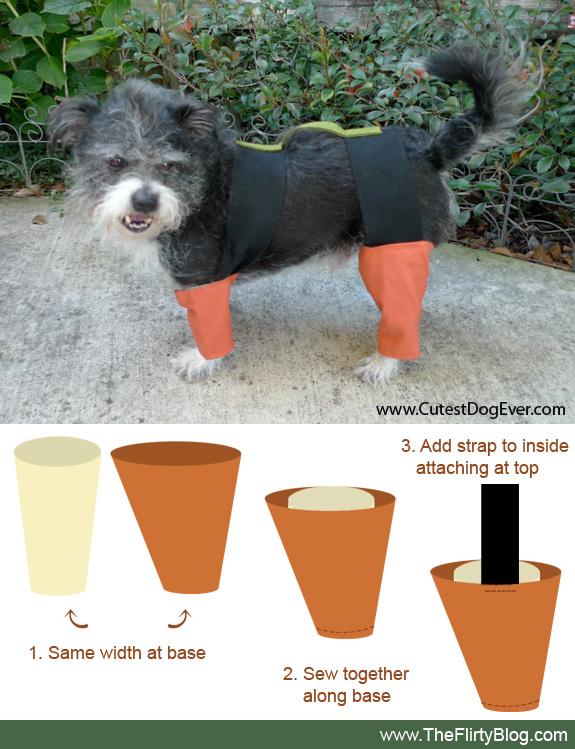 wednesday september 28 2011 - How To Make A Dog Halloween Costume