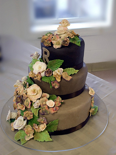 Tiramisu Wedding Cake Recipes Tiramisu twelve ways Best images