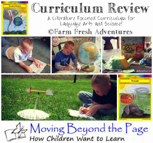 moving beyond the page curriculum review