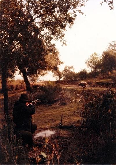 Monteros. El blog de la montería tradicional y las rehalas