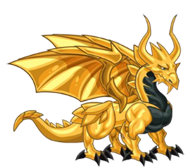 dragon oro adulto
