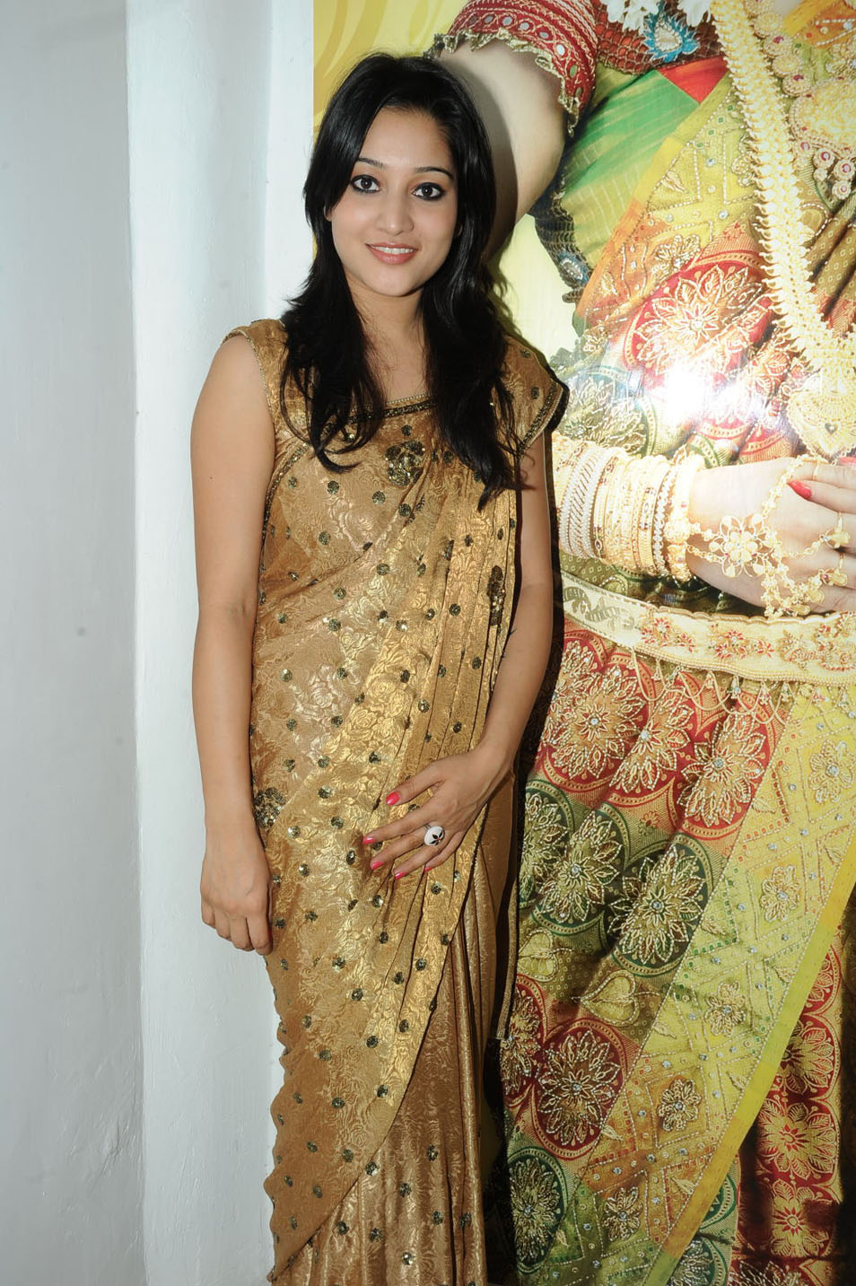 , Ritu Barmecha Hot Pics in Saree