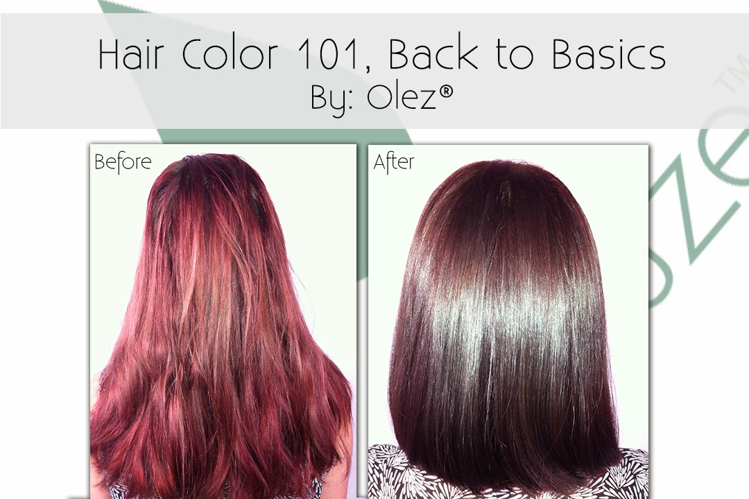 Olez Haircare Blog: Hair Color 101, Back to Basics