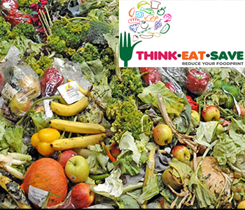World Environment Day 2013 Think Eat and Save