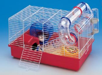 Hamsterların Yaşama Ortamları Nasıl Olmalıdır