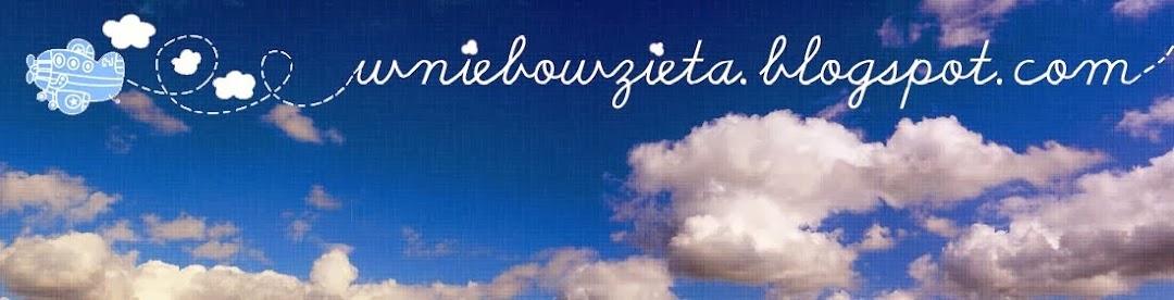 wniebowzieta.blogspot.com