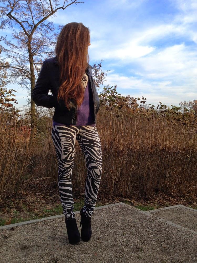 jeansy w zebre