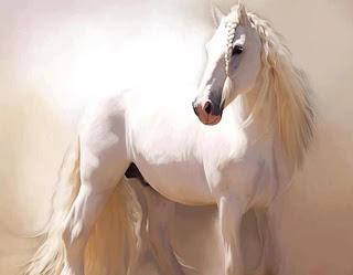 Caballo blanco en pintura fotografias de caballos blancos