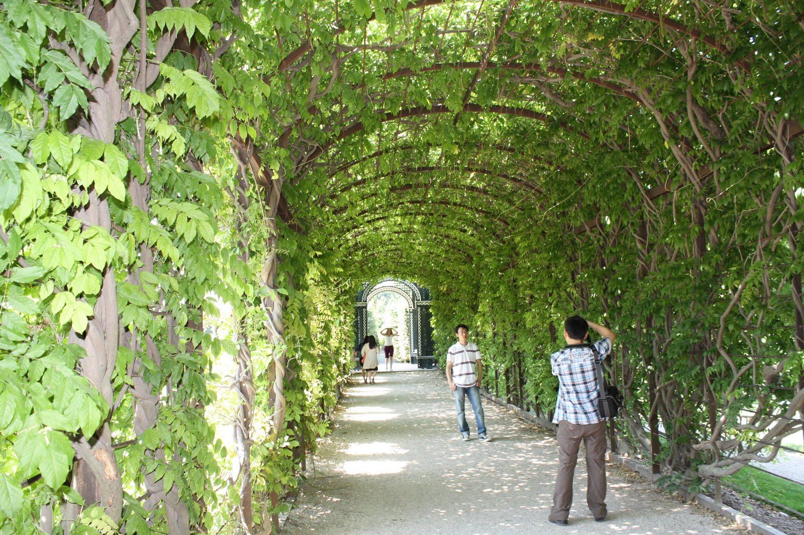 http://4.bp.blogspot.com/-jFBQTB_qZ9E/ThyaJlV-0TI/AAAAAAAAL-k/erfLo9r7Zuo/s1600/Canon+450D20100909+2966.jpg