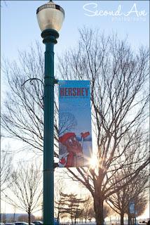 hershey, chocolate world, zooamerica, gettysburg, irish brigade monument, photoblog, birds of prey, bald eagle, low light, animals, nature, zoo, flare, snake, owl, fish, pennsylvania, Virginia photographer, macro, macro photography, travel, photography,