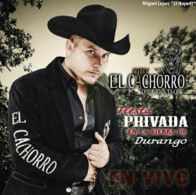 Mario El Cachorro Delgado – F.P En La Sierra De Durango (2013) (Album  Disco)