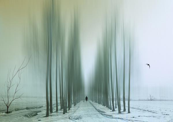 Josh Adamki. Fotografía abstracta. Doctor Ojiplático