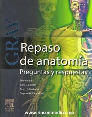 Anatomía   Rincón Médico