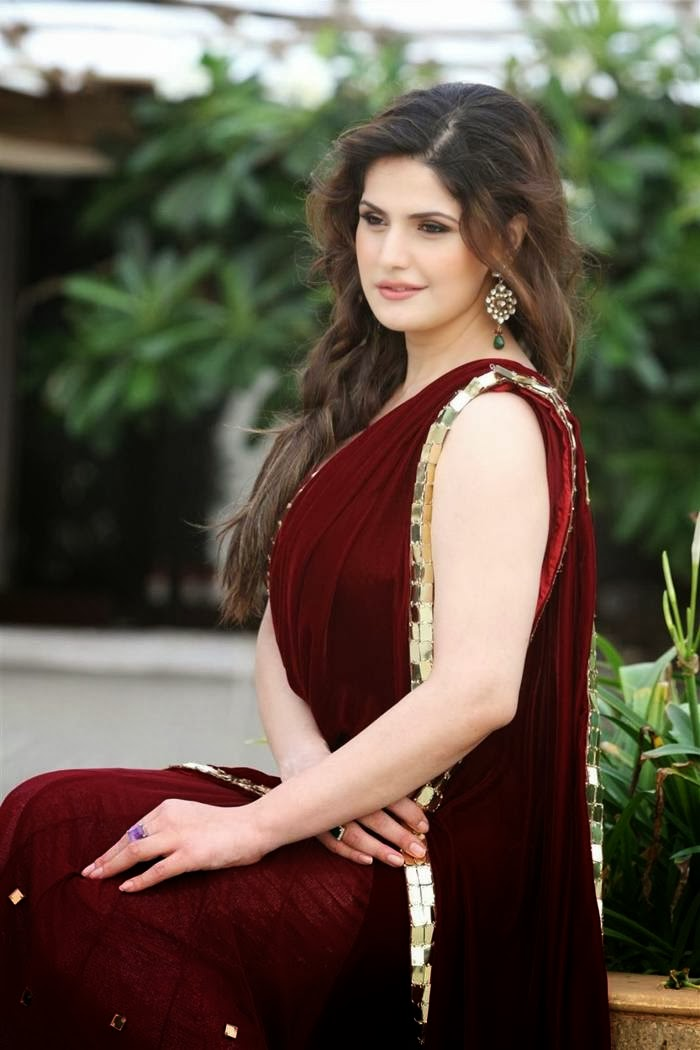 Zarine Khan in saree at Sensual in saree picture gallery picture