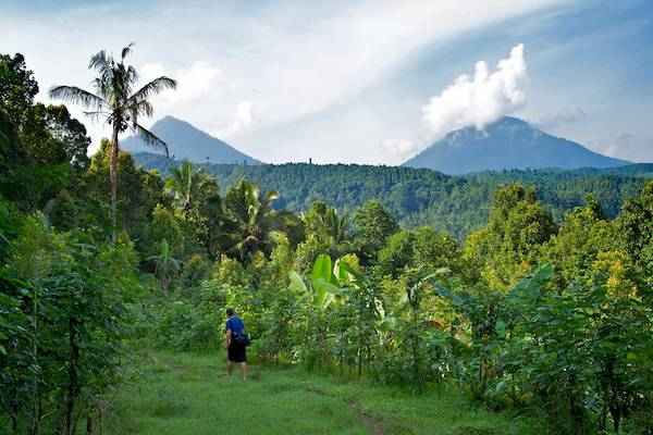 Bali - Munduk, perfect place for trekking