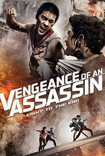 Baixar Filme Vingança de Um Assassino Dublado Torrent
