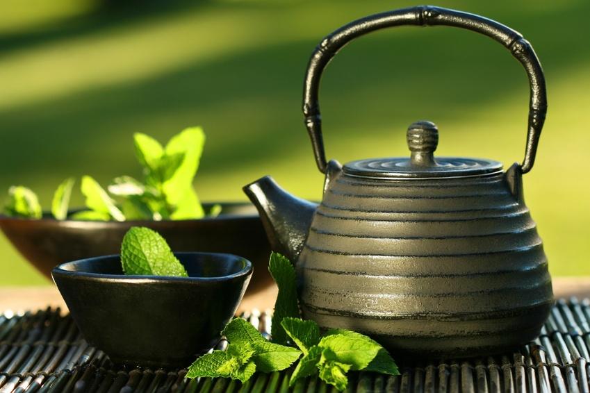 معلومات تهمك مع ايمان شاهين Green_tea