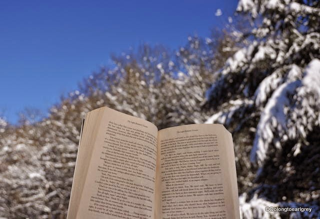 Book, Snow in the Forest, Frankfurt, Germany