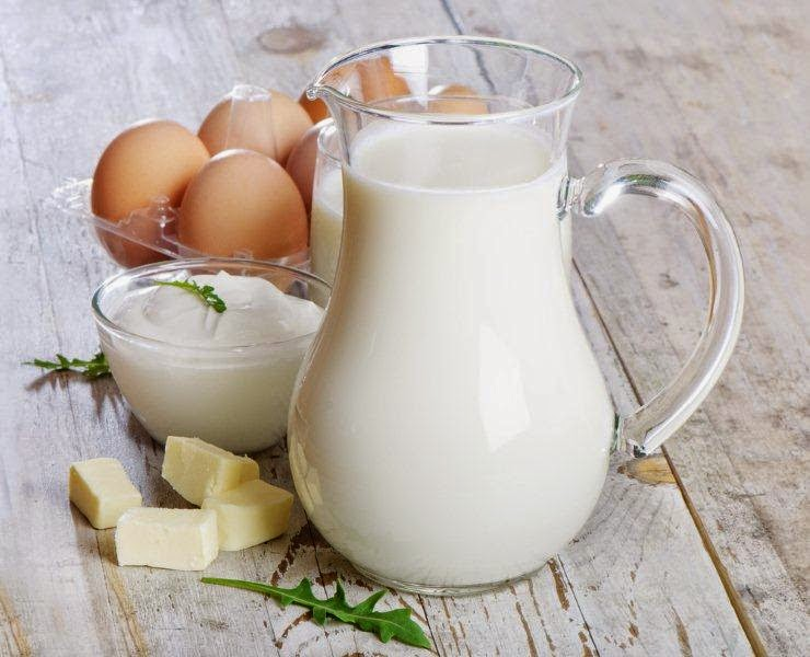 dairy-products-and-egg