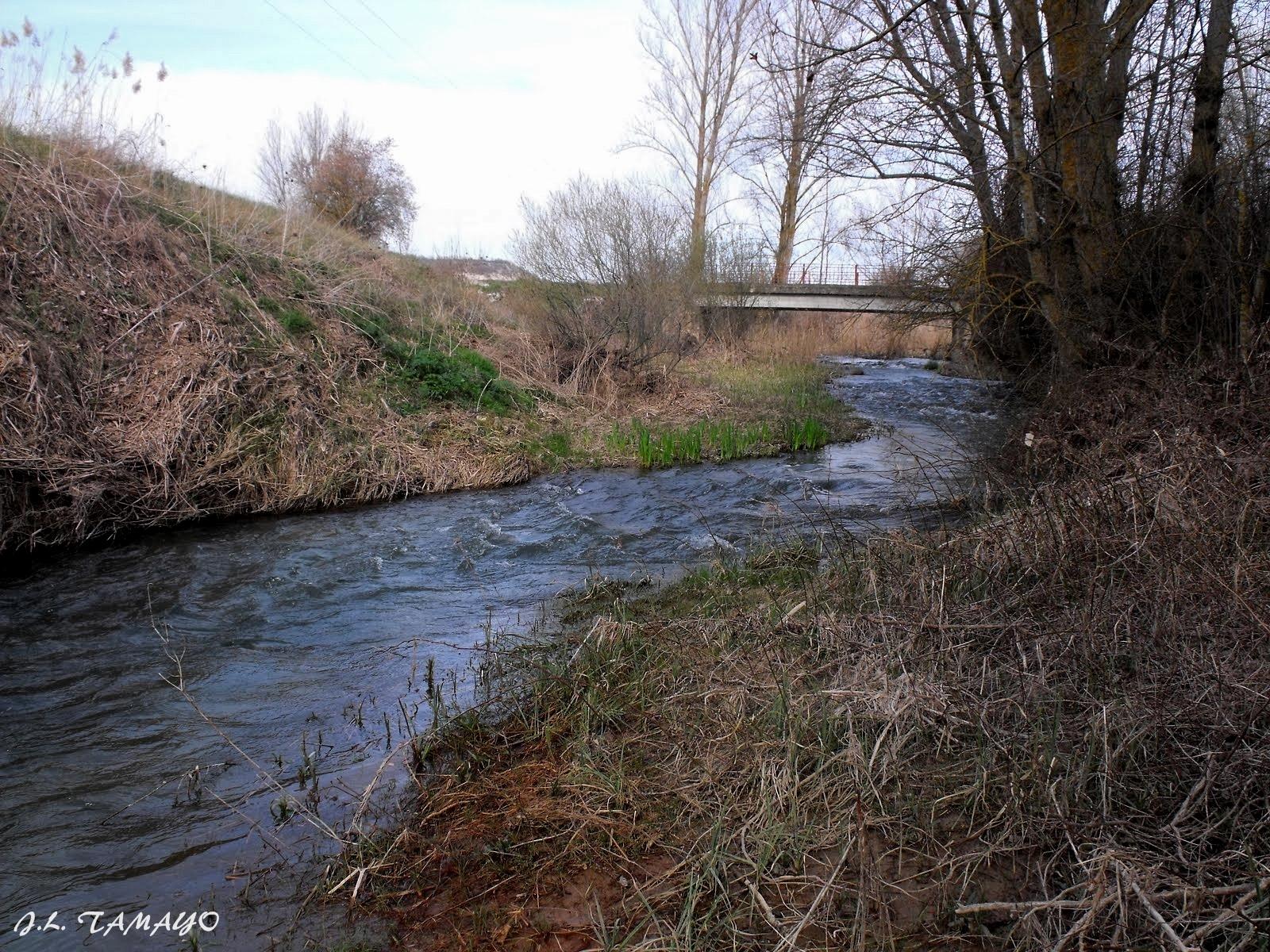Inquietudes y fotografia r o esgueva for Gimnasio rio esgueva