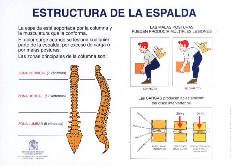Cl nica arthros vigo consejos sobre higiene postural for Practica de oficina definicion