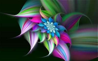 Fondos Flor de Verano Llena de Color