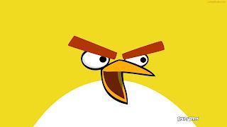 Angry 2013