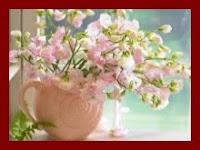 O florescer