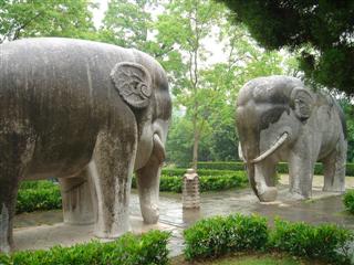 Feng shui total simbolos feng shui el elefante for Elefantes decoracion feng shui