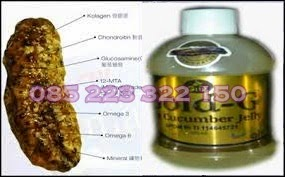 Obat Penyakit Kuning Alami