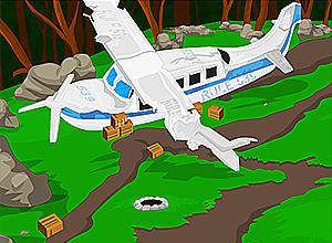 Crashed Plane Escape