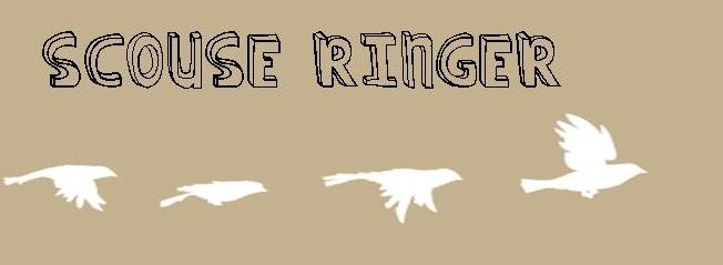 Scouse Ringer