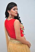 yamini bhaskar latest glam pics-thumbnail-17