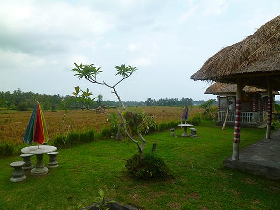 Los alrededores del restaurante de Bali
